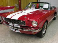 shelby66